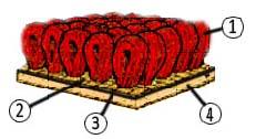 Из чего состоит ковролин